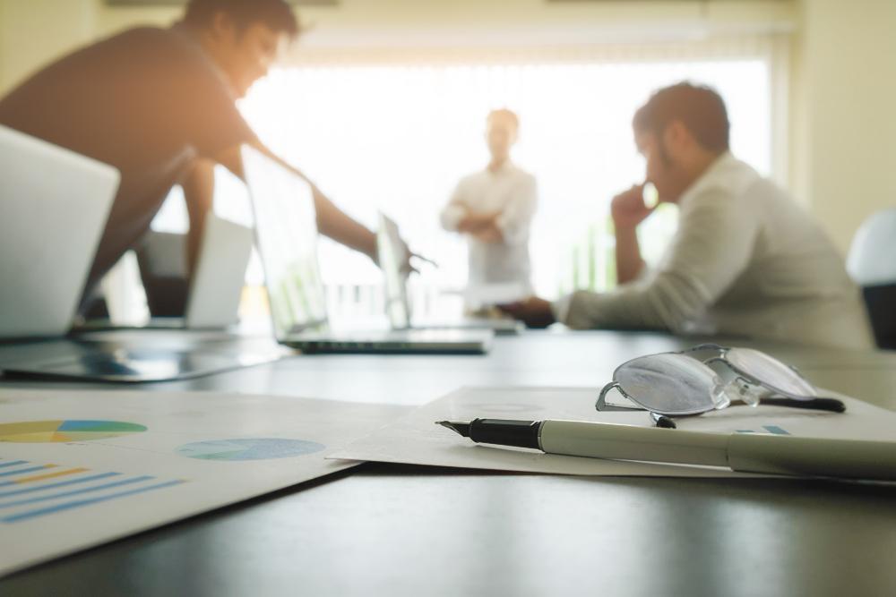 SAP Assessor / Sustainability Consultant